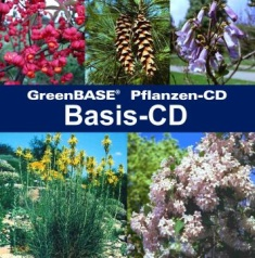 Cover Basis-CD